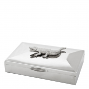 Box Rectangular Croc
