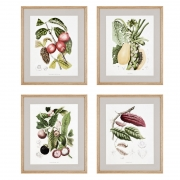 Prints Papaya Cacao set of 4